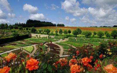フランス最高の園芸家の手による庭園、シャトニエー城の庭