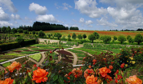 Les jardins du Château de la Châtonnière